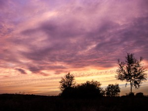 Pineham Field Trip 11Aug15 - sunset