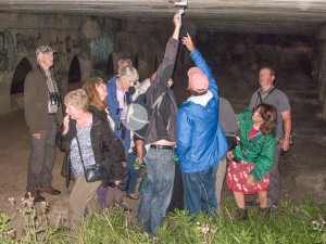 Pineham Field Trip 11Aug15 - looking at the bat roost