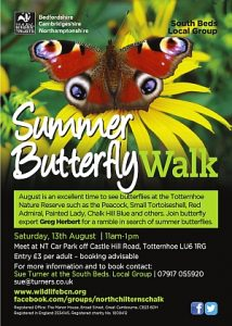 South Beds. Wildlife Trust Local Group Summer Butterfly Walk, Totternhoe Nature Reserve 13 August 2016 icon