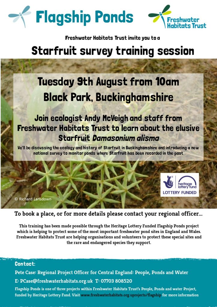 Flagship Ponds Starfruit poster Black Park August 2016