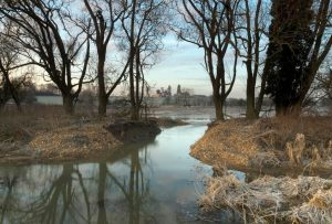 Floodplain Forest Nature Reserve