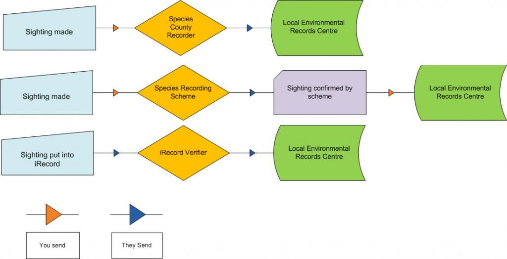 Recording Process Flows
