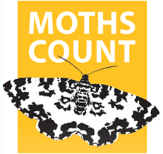 Moths Count logo