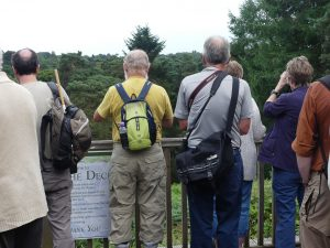 Society members viewing the heronry and ©Harry Appleyard, Rushmere Country Park 18 July 2017