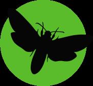 icon_moth