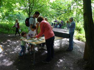 Howe Park Wood Nature Day by Julie Lane 1 July 2016