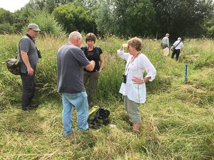 Milton Keynes Natural History Society members walk around Linford Lakes by Peter Hassett 9 July 2016