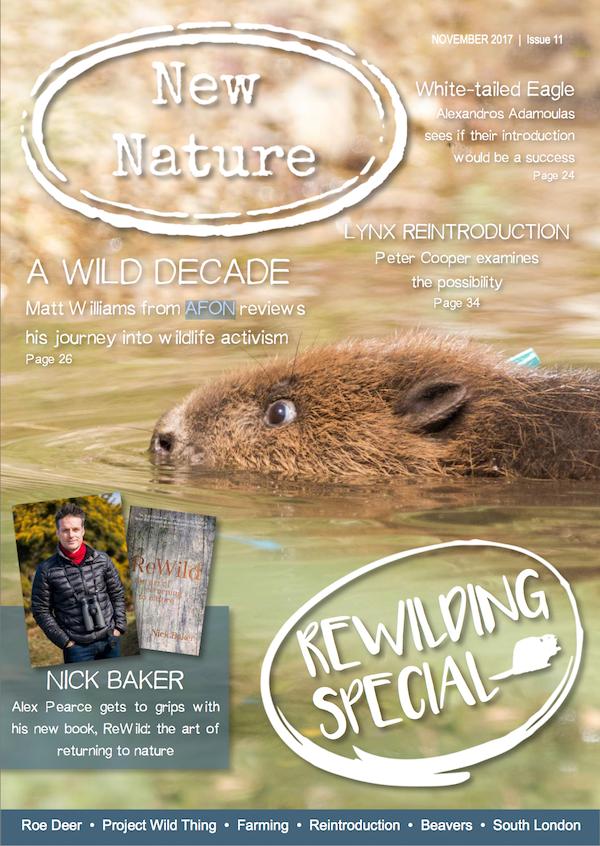 New Nature Magazine Issue 11