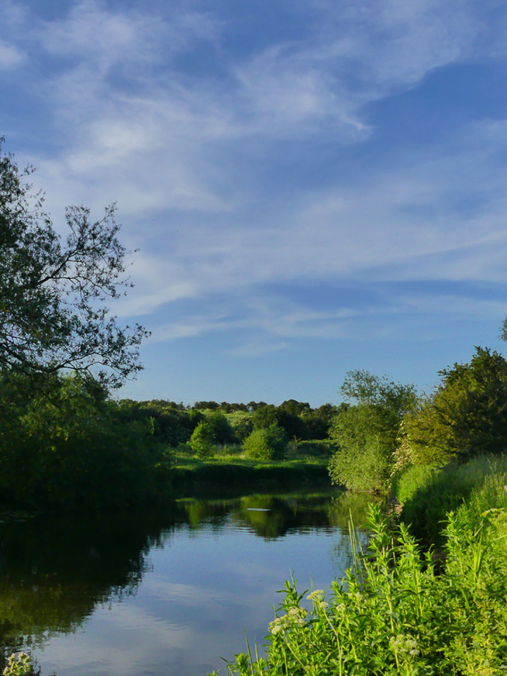Nene Valley River ©Harry Appleyard, Rushden Lakes 5 June 2018